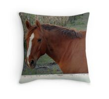 Red Horse, White Fence Throw Pillow