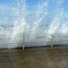 Westgate Wave by Melissa Contreras