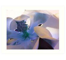 Blue Softness Art Print