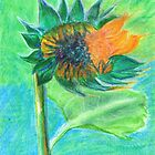 Sunflower bursting into life by Elizabeth Kendall