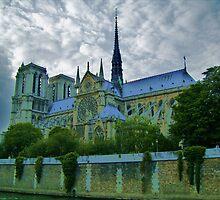 Notre Dame de Paris II by HELUA
