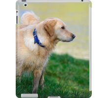 Megan at The Gearagh, Macroom, County Cork, Ireland iPad Case/Skin