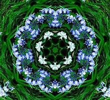 Bluebell Flower Kaleidoscope Mandala by TigerLynx