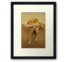 In my Easter Bonnet Framed Print
