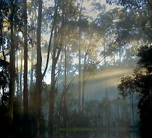 Sunrise Reflections by Sue Wickham