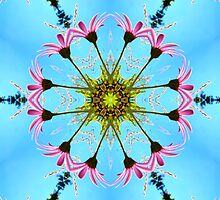 Pink and Blue Gerbera Flower Kaleidoscope Mandala by TigerLynx
