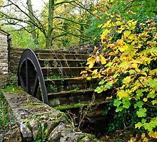 Old Mill and Water Wheel, Miller's Dale by Rod Johnson