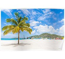 Palm Tree on St Martin Poster