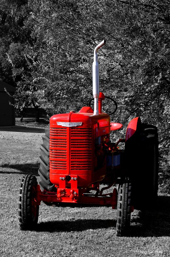 BIG RED by Cheryl Hall