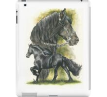 Friesian iPad Case/Skin