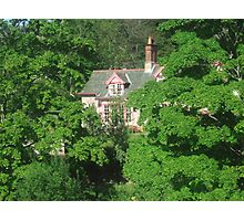 Pink House Through The Trees Photographic Print
