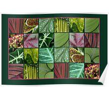 leaf quilt Poster