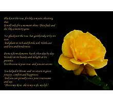 Yellow Rose Greeting Card With Verse - Pluck Not the Rose  Photographic Print