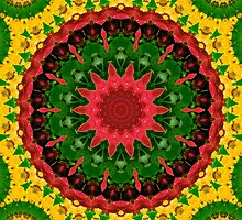 Red, Yellow and Green Kaleidoscope Mandala by TigerLynx