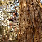 Tree climbing West Australian style 1020 views by georgieboy98