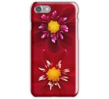 Collarettes iPhone Case/Skin
