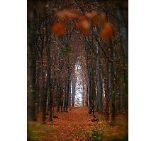 How to open door to paradise . Psalm 127:2 . #autumn . Andrzej Goszcz Photographic Print