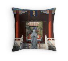 Confucius  Throw Pillow