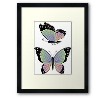 Cartoon Butterflies Framed Print