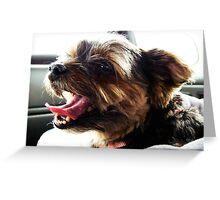 Shotgun Terrier Greeting Card
