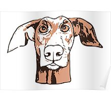 Quirky doberman Poster