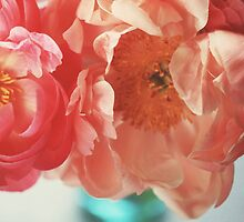 Paeonia #4 by ALICIABOCK