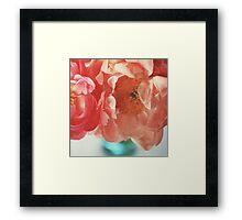 Paeonia #4 Framed Print