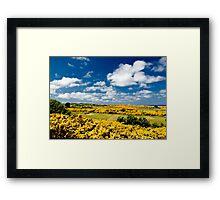 Golden Links Framed Print