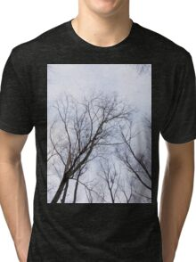 Trees in winter park Tri-blend T-Shirt