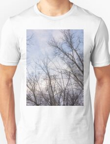 Trees in winter park 4 T-Shirt