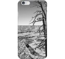 Grand Canyon Overlook BW iPhone Case/Skin