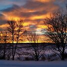 Winter's Rise by Creative Captures
