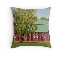 Rural Red Throw Pillow