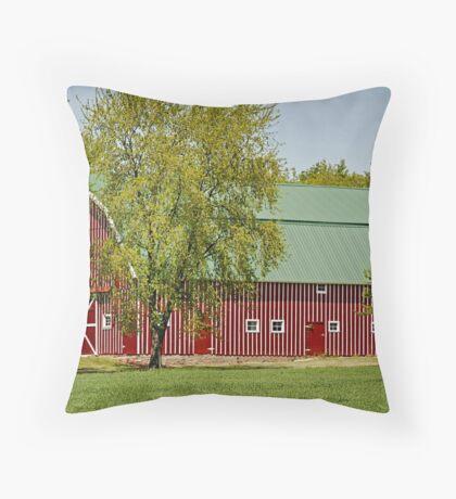 Rural Red Throw Pillow