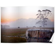 Rural Morning Magic Poster