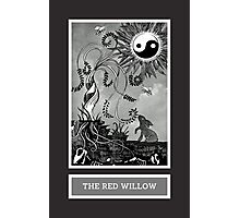 Shadow Season: THE RED WILLOW Photographic Print