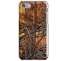 Fire In The Frost iPhone Case/Skin