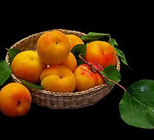 Apricots by jerry  alcantara