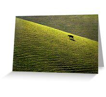 Bovine Feast Greeting Card