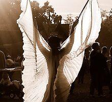 fly by David Albino