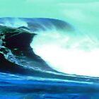 Hawaiian wave by happyphotos