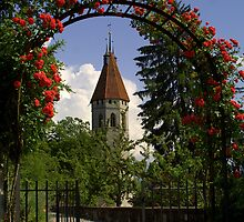 Roses of Thun by Daniel Kazor