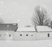 Winter White by Bethany Helzer
