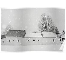 Winter White Poster