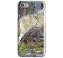 Timber Wolf on the Alert iPhone Case/Skin