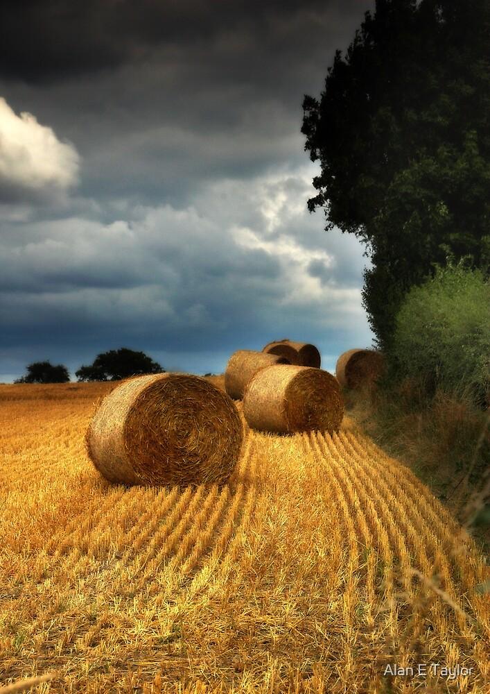 Straw Bales under a stormy sky by Alan E Taylor