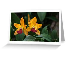 Yellow Tuesday Greeting Card