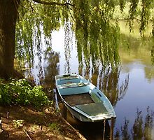 Along the Loire river (NW France) by Corinne Pouzet