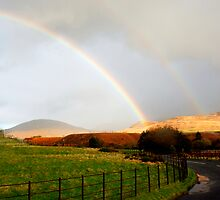 Buy image @ www.willoakley.com Lucky Rainbows  by WillOakley