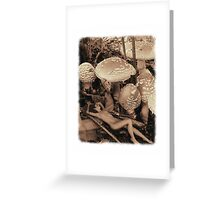 Summer Pixie Greeting Card